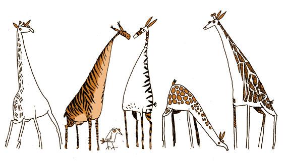 princessh illustration zebraffes
